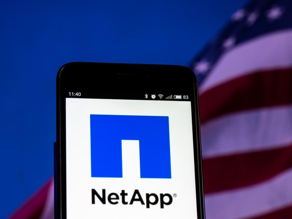 Netapp startup accelerator