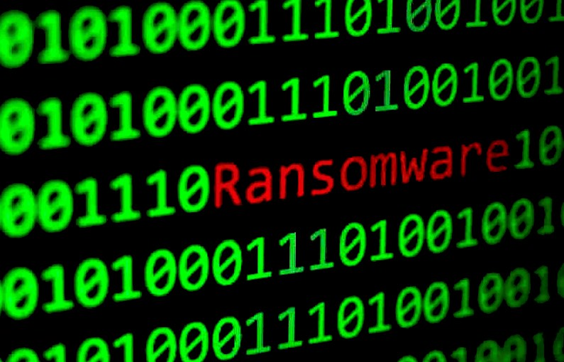 ransomware database