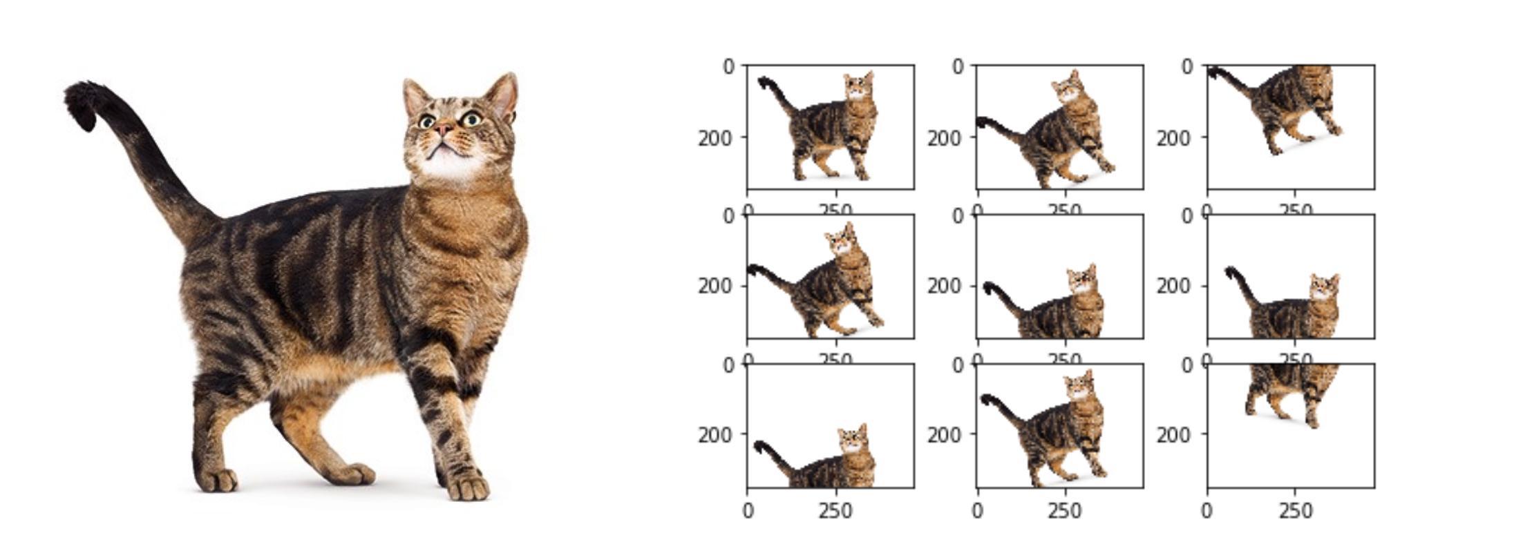 image data augmentation