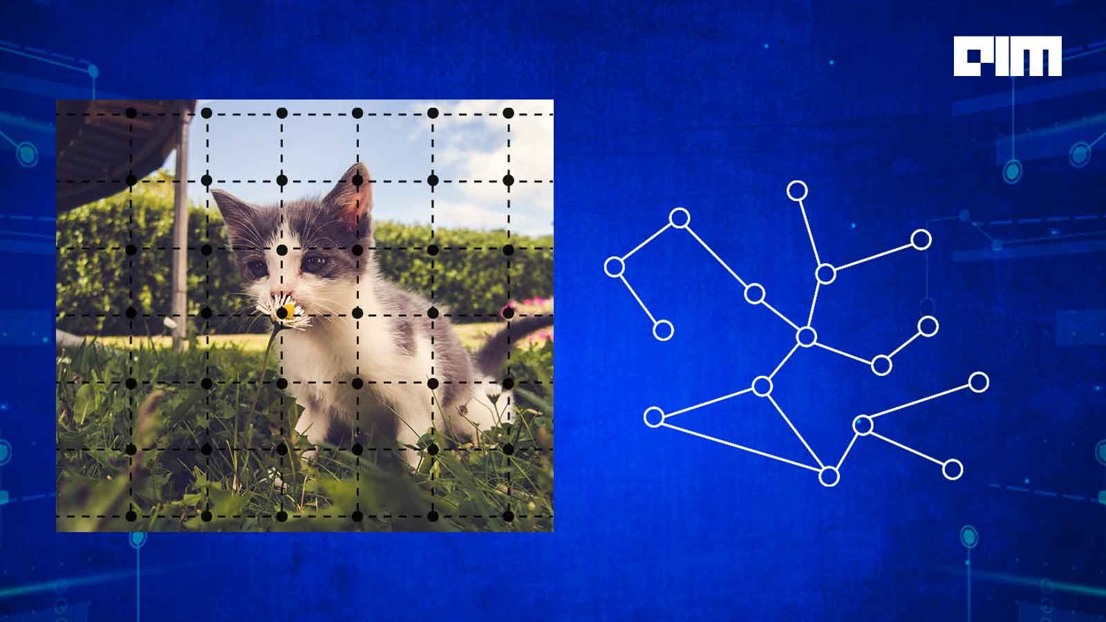 Why Graph Neural Networks Are Gaining Popularity In 2021