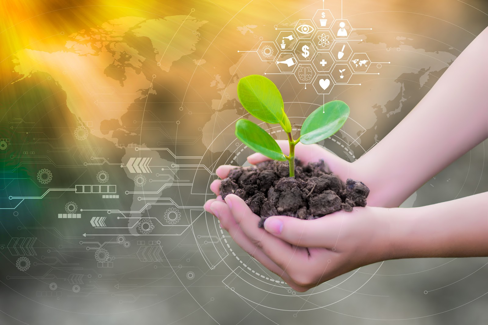 Does ML Hold The Promise To Environmental Justice?